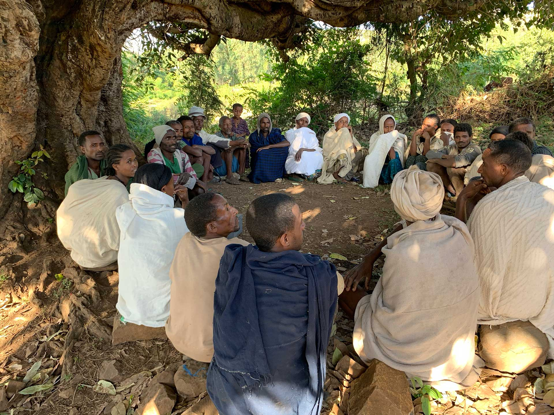 Village economic and social association members gathered under a tree